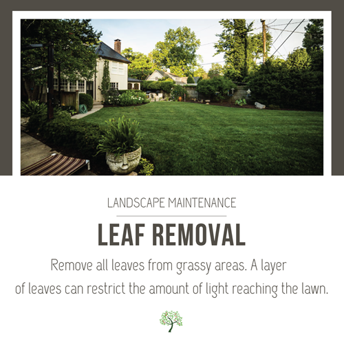 Greathouse_social_checklist_item-leaf-removal.png